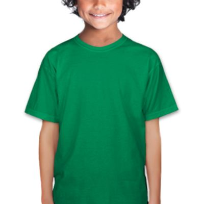 Gildan Heavy Cotton™ Youth 5.3 oz. T-Shirt (CO1) Thumbnail